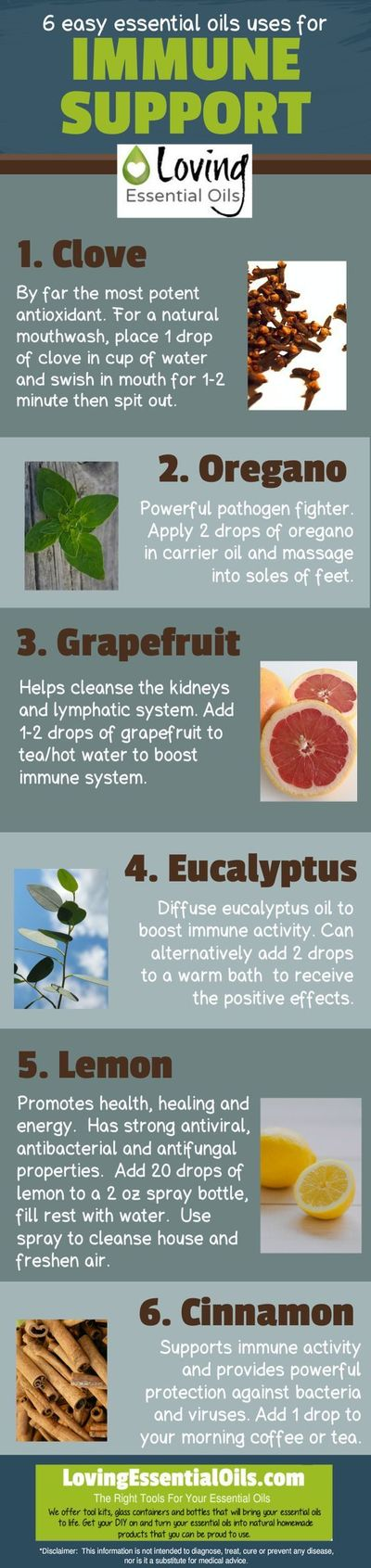 Essential oils are natures miracle makers. They can help improve immune system naturally. The immune system protects your body from infections, foreign bodies a