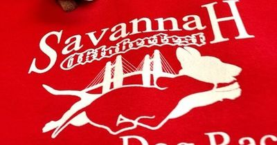 Head down to River Street on Saturday, October 5th to watch the Savannah Wiener Dog Races! So much fun for the whole family�€�