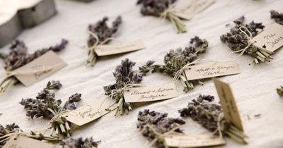 lavendar name tags