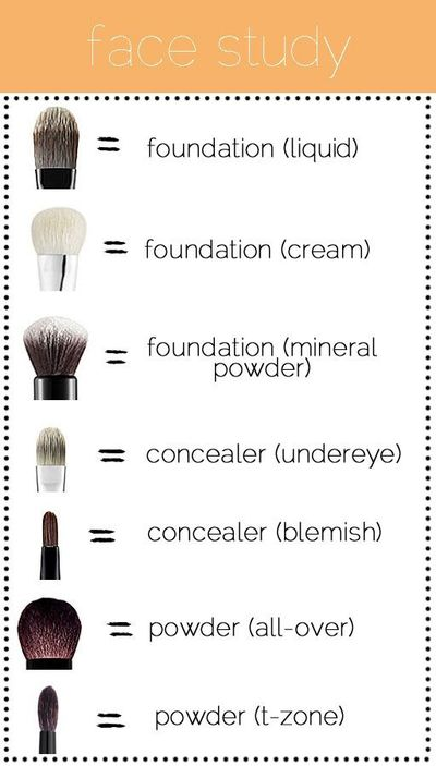 makeup brushes, foundation brush and makeup brush guide.