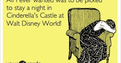"""""""All I ever wanted was to be picked to stay a night in Cinderella's Castle in Walt Disney World!"""" Is that too much to ask?!"""