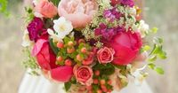 Every season has its typical sort of flowers. Wth their striking shades and different shape of blooms, they provide endless options for flower arrangements and
