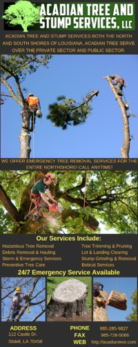 Hire a specialized for Tree removal and storm damage experts at Acadian Tree & Stump Removal in Covington, LA. Call us at: (985) 285-9827 with a team of experts who take care while removing the trees.see more: http://acadiantree.com/tree-remov...