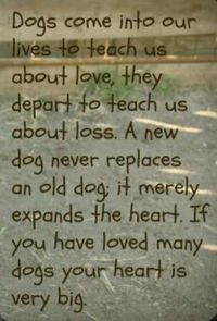 Thispostwas discovered by Joy Smith. Discover (and save!) your own Pins on Pinterest. | See more about dog quotes, big hearts and pet loss.