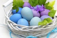 How to improve the quality of your eggs?