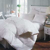 Astra Down Alternative Comforter by Downright $122.00