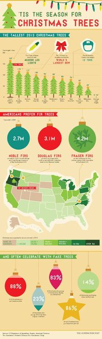 What You Didn't Know About Your Christmas Tree