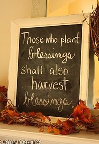 plant blessings. Love!