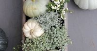Five easy, chic, and minimal ways to decorate your kitchen table for the fall season.