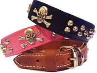 Skull and Crossbones Leather Dog Collar with Studs, Tapered, 1.5 inch wide $54.99