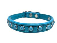 Turquoise Studs Leather Dog Collars | Small Dog Collars | Leather Cat Collars | Western | Leash available $35.00