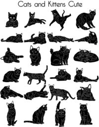 Cats and Kittens Cute Just for: $23.90
