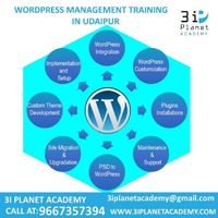 3i Planet Academy Offer WordPress Training on live Project By Professional Web Designer and Developer in Udaipur. and We are The Best Wordpress Developer In Udaipur.