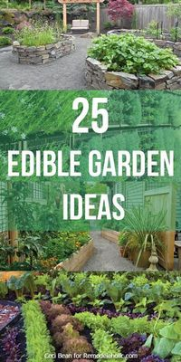 25 Edible Garden Ideas -- grow herbs and vegetables no matter the size of your yard