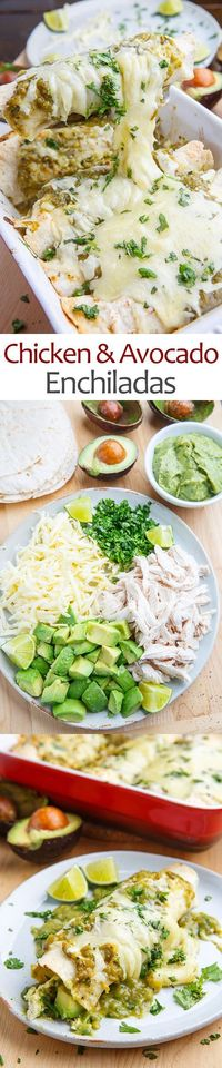 Quick and easy chicken and avocado enchiladas covered in platy of melted cheese!