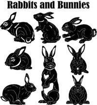 Rabbits and Bunnies Just for: $14.90