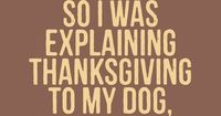 Do you include your dog when you celebrate Thanksgiving? This dog is getting a lesson about Thanksgiving. As her human started to explain Thanksgiving to her, s