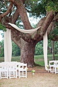 Outdoor ceremony? You can totally use the natural elements around you to decorate. And how much does a few yards of lovely white fabric cost? Not that much, but it looks fabulous.