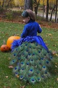 peacock halloween costume - ok, maybe in a couple of years.