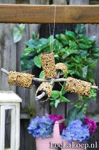 Quick 'n Easy DIY: Bird Feeder Mobile from Toilet Paper Rolls, Peanut Butter Bird Seed