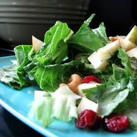Winter Fruit Salad with Lemon Poppyseed Dressing | See more about fruit salads, dressings and lemons.
