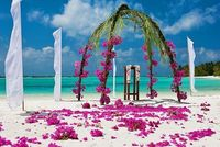 Beautiful Beach wedding. If we go the beach venue then this will probably be done