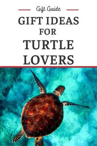 Turtle Gifts - Gifts for People Who Love Turtles