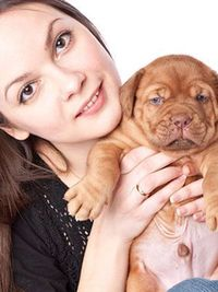 Get results with these six tips from the Dog Whisperer