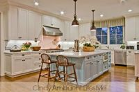 Find beautiful white kitchen inspiration with photos of luxury kitchens and celebrity kitchens. Tips and takeaways on how to achieve a high-end look in your own