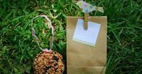 "Birdseed ball as party favor and has instructions to ""take this back to your nest""!"