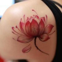 The homeland of the Lotus Flower Tattoo is Egypt and India. They have an amazing beauty that is rare to find. The lotus flower (Nelumbo nucifera), a subject of