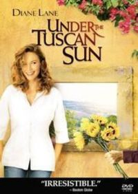Under the Tuscan Sun. A life-changing movie, if you choose it. Love Diane Lane. Wonderful entertaining story of loss and rising above and finding love, in several places.