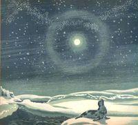 seals, moon and illustrators.