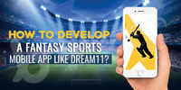Fantasy Sports may be a form of on-line game wherever participants assemble imagined or virtual groups of real players of knowledgeable sport. These groups vie supported the applied match performance of these players' in actual games. BR Softech is ...