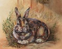 """French Country Barn Lapin (Bunny Rabbit) Archival Giclée Fine Art Print 11"""" x 8 1/2""""-French Country by CherylElich on Etsy https://www.etsy.com/listing/124883876/french-country-barn-lapin-bunny-rabbit"""