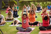 Quick Weight loss Yoga Classes in Udaipur HFS