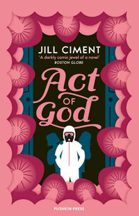Book review: Act of God by Jill Ciment