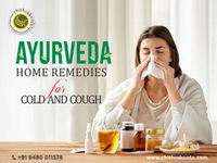 Ayurveda Remedies for Cold and Cough