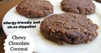 You know you're on to something good when your husband says, �€œFinally�€� a cookie I can dip. I haven't been able to do this since Oreos.�€ A *great* dippable and chewy texture! Plus, they're allergen-free: gluten-f...