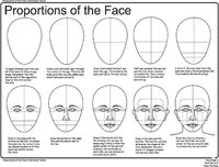how to draw faces worksheet | Facial Proportions Notes