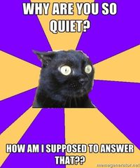 Why are you so quiet? How am I supposed to answer that?? | Anxiety Cat