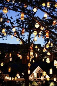 Lanterns are the perfect way to set the mood for your next meal or event! They are also the perfect addition to your holiday decor. Let us show you how!