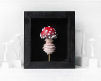 Wall Hanging Shadow box w/ 3D hand-sculpted mushroom, Fungi art, Home decor, Whimsical art, Fly Algeric, Nature art $68.00