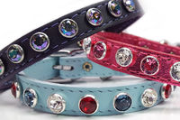Extra Small Leather Dog Collars with Swarovski Crystal Rhinestone Bling, Cat Collars, Kitten Collars, Puppy Collars $28.00