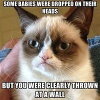 "I'm starting to think I should just make a board titled ""grumpy cat""."