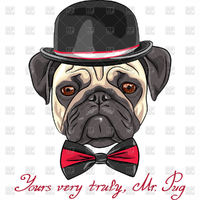 Hipster dog in a hat and bow tie - Pug vector image