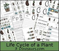 Free Life Cycle of a Plant Printables Pack