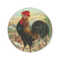 Vintage Rooster Stickers