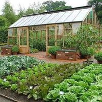liking this greenhouse
