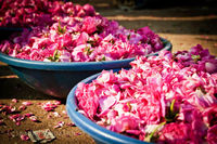 The City of Nawabs is a rare mix of two worlds. One that is the metropolis, has all the things working for it whereas, in some other parts of town, you happen to visit the Gudimalkapur flower market that takes you through an unfamiliar segment of society ...